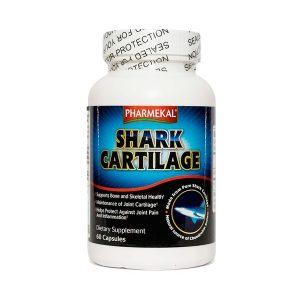 Sụn Cá Mập Shark Cartilage