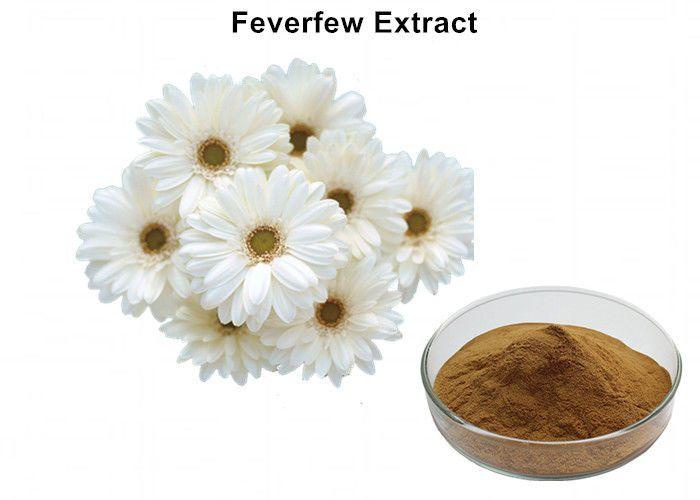 Migrin chứa hoạt chất FeverFew F giúp tạm biệt cơn đau nửa đầu