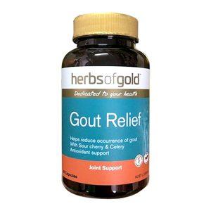 Viên uống hỗ trợ trị bệnh Gút Gout Relief Herbs Of Gold Úc